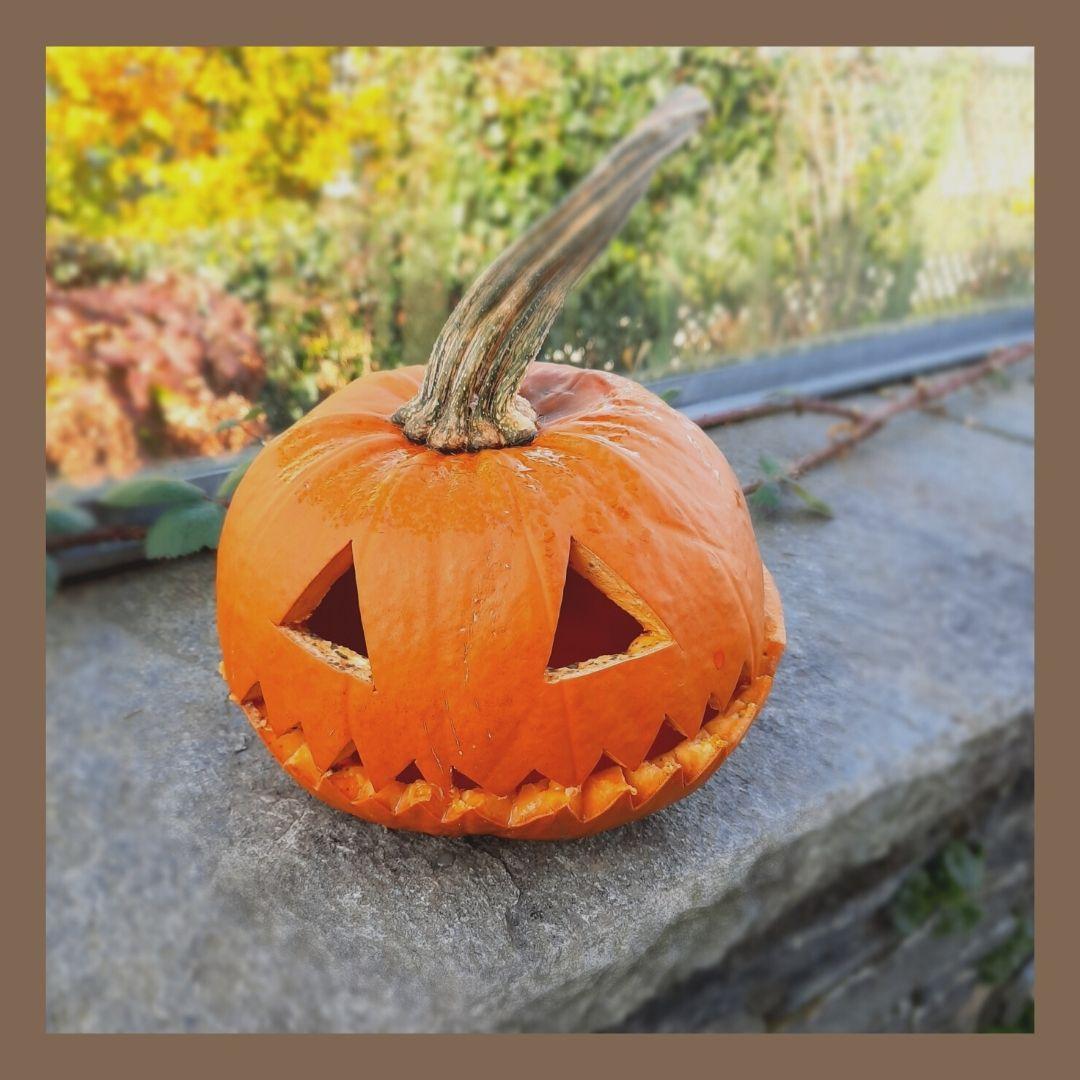 1 - Halloween 2020 - Ideen für ein bisschen Gruseln in den eigenen vier Wänden